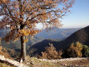 Montagne de la Garrotxa depuis le camping Pyrénées Orientales