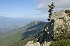 Les Albères proche du camping Pyrénées Orientales montagne